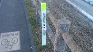 遊歩道の目印