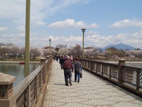 筑波山もきれいに見えました