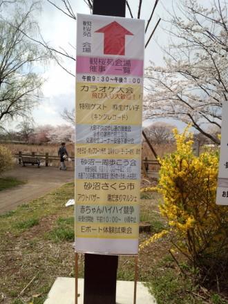 桜まつりの案内