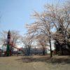 多賀谷城跡公園