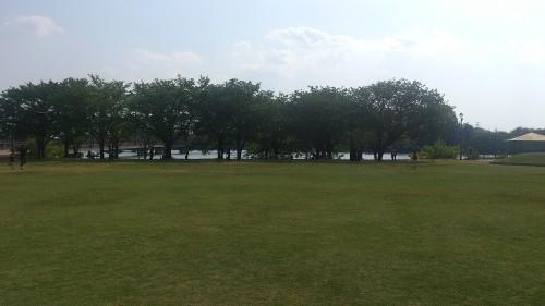 観桜苑でサッカー