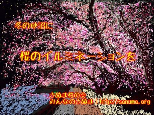 冬の砂沼に桜のイルミネーションを
